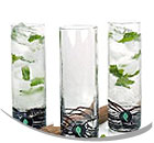 Santa Barbara Mojito Glasses & Accessories